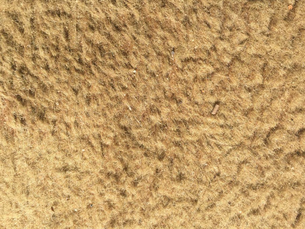 Dirty Beige Carpet Stock Texture