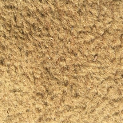 Dirty Beige Carpet Stock Texture