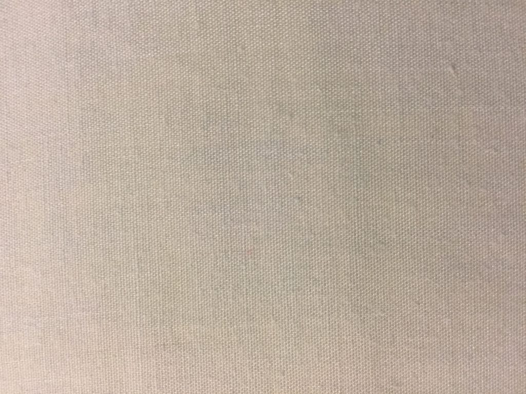 Off white canvas like fabric with light texture