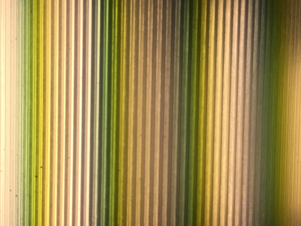 Vertical bars of light featuring light yellow mixed with dark green