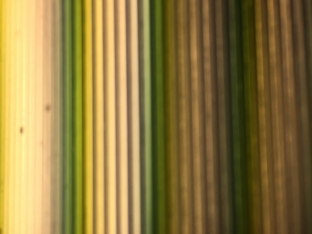 Green and yellow lines of color