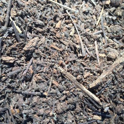 Crumbled mulch with sticks and dirt