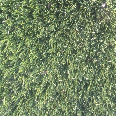Astroturf grass with medium length blades