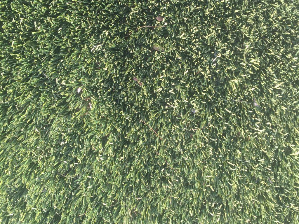 Dark green medium length grass with dirt texture