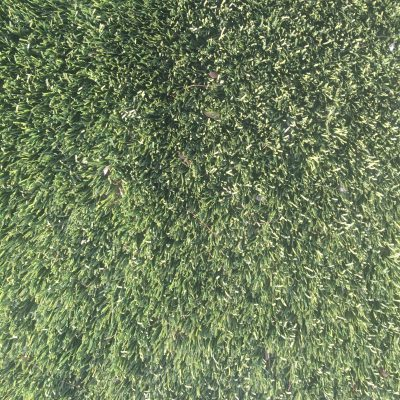Dark green medium length grass with dirt texture