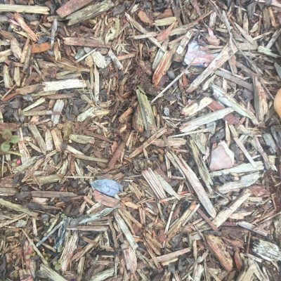 Mulch bed with earth tones and wood chips
