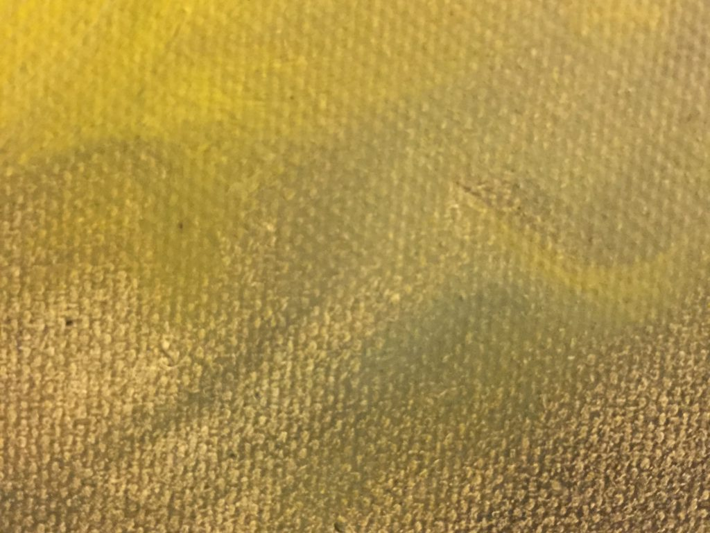 Close up of painting with canvas texture and brush strokes