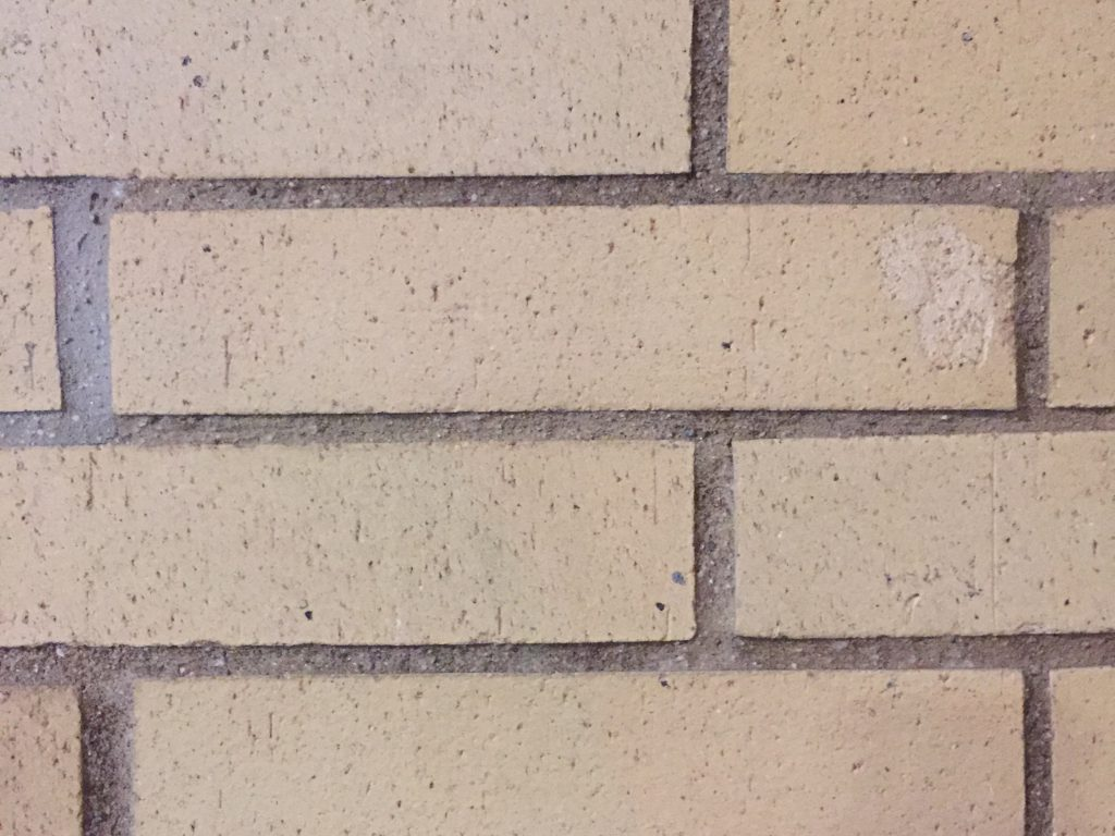 Close up of off white bricks with narrow gaps filled with concrete. Bricks have light texture