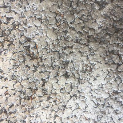 Off white circular concrete texture