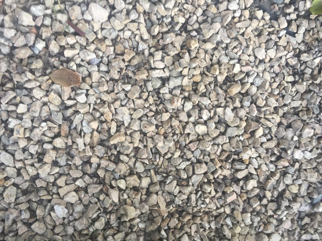 White gravel with leaf
