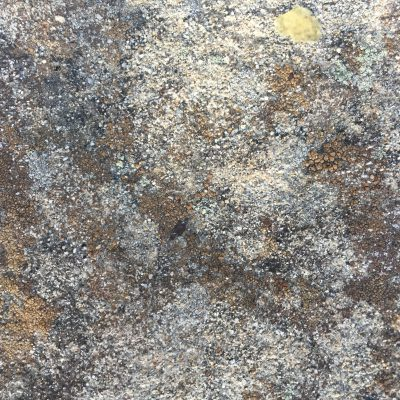 Metallic Rock with Gold Spots Stock Texture