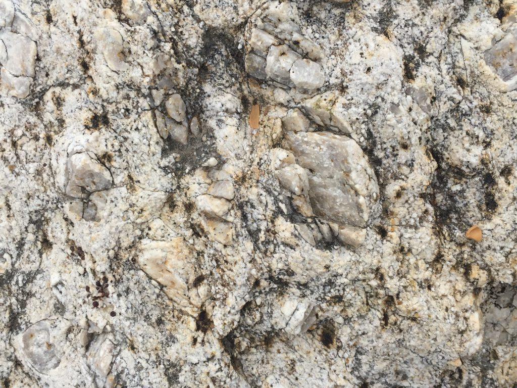 Rock Close Up Texture