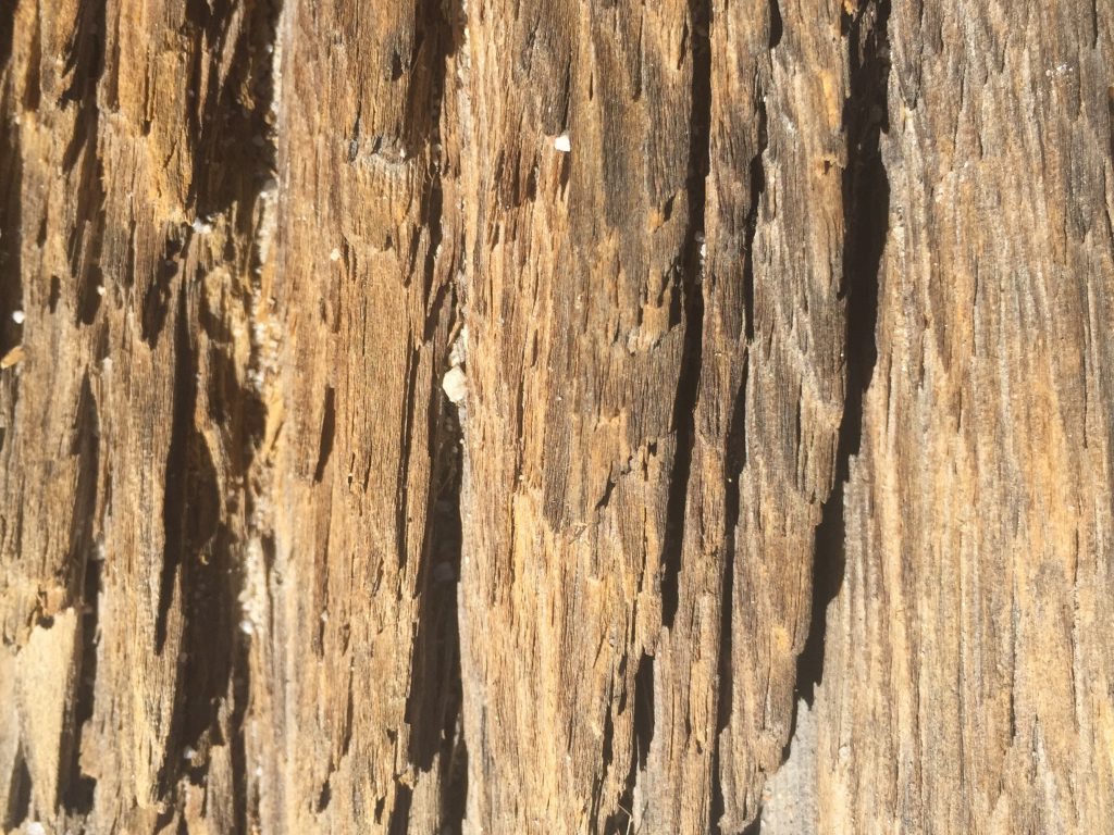 Splintered Dried Wood Stock Texture