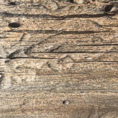 Macro stock image of dead wood grain