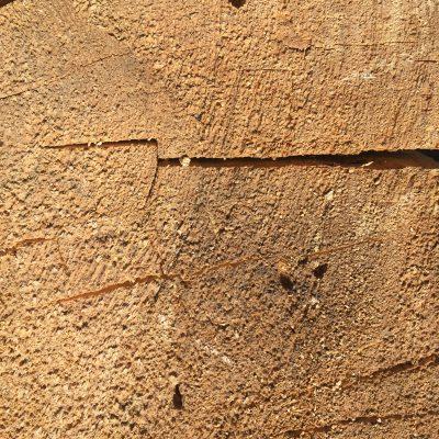 Cut Wood Grain
