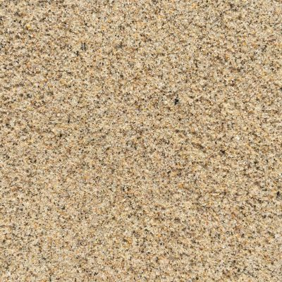 Noisy speckled wet beach sand texture