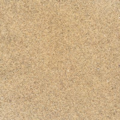 Tiny specs of noise throughout packed down wet sand