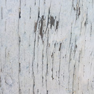 Hard old wood with white cracked paint texture
