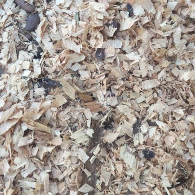 Close up of wood chips texture