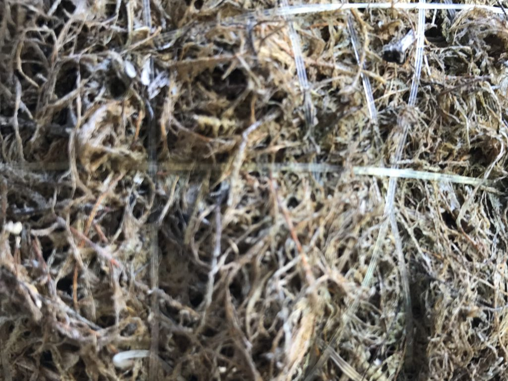 Wiry Mulch with thin strips of clear plastic holding it together