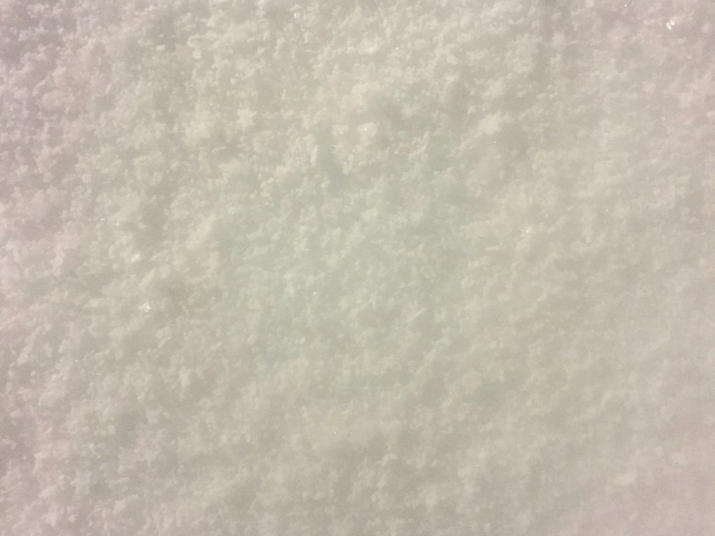 White field of snow close up texture