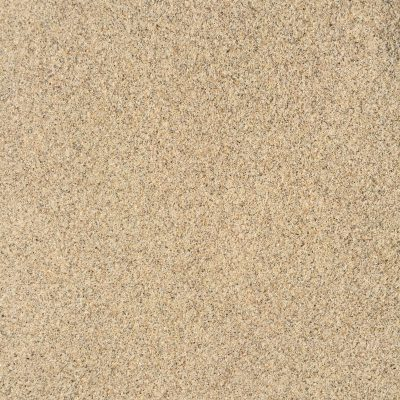Light brown wet sand with dark speckled texture