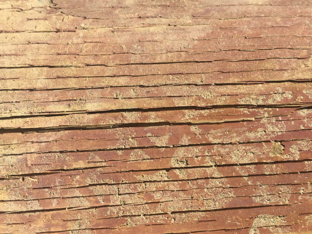 Cracking red log