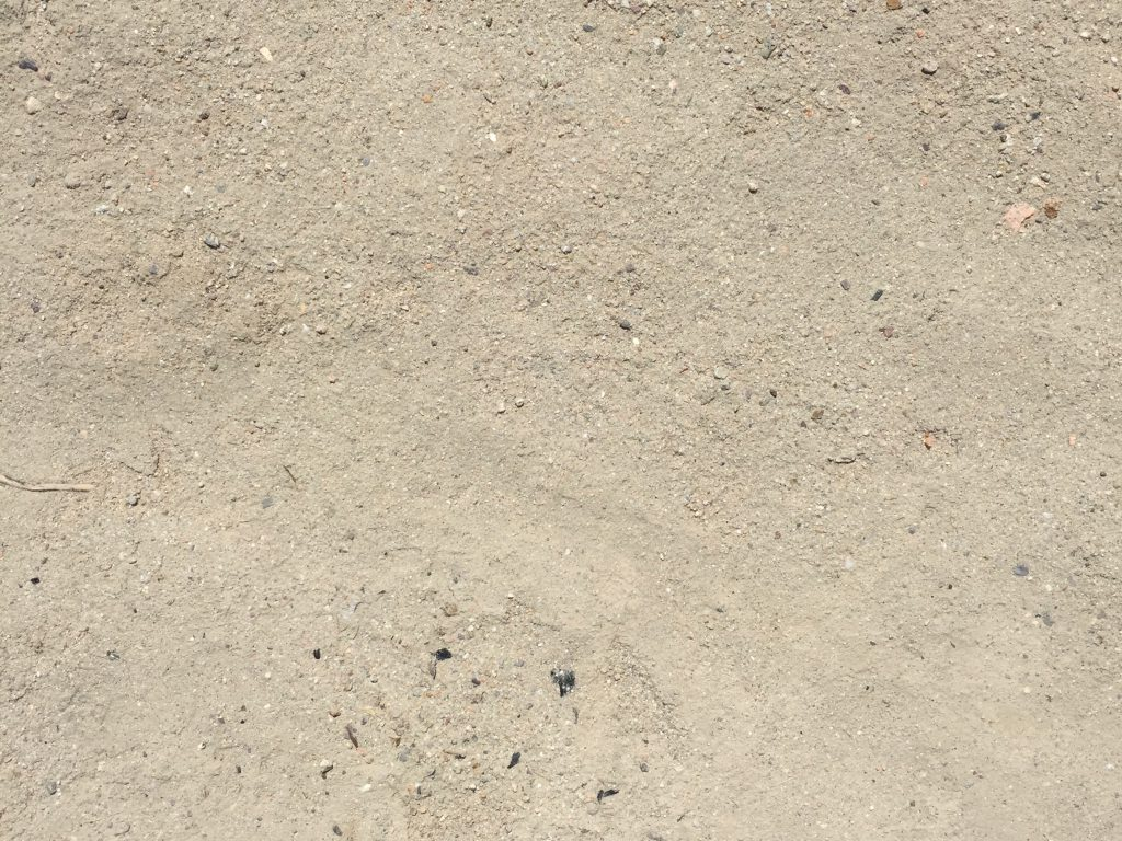Light brown dirt floor