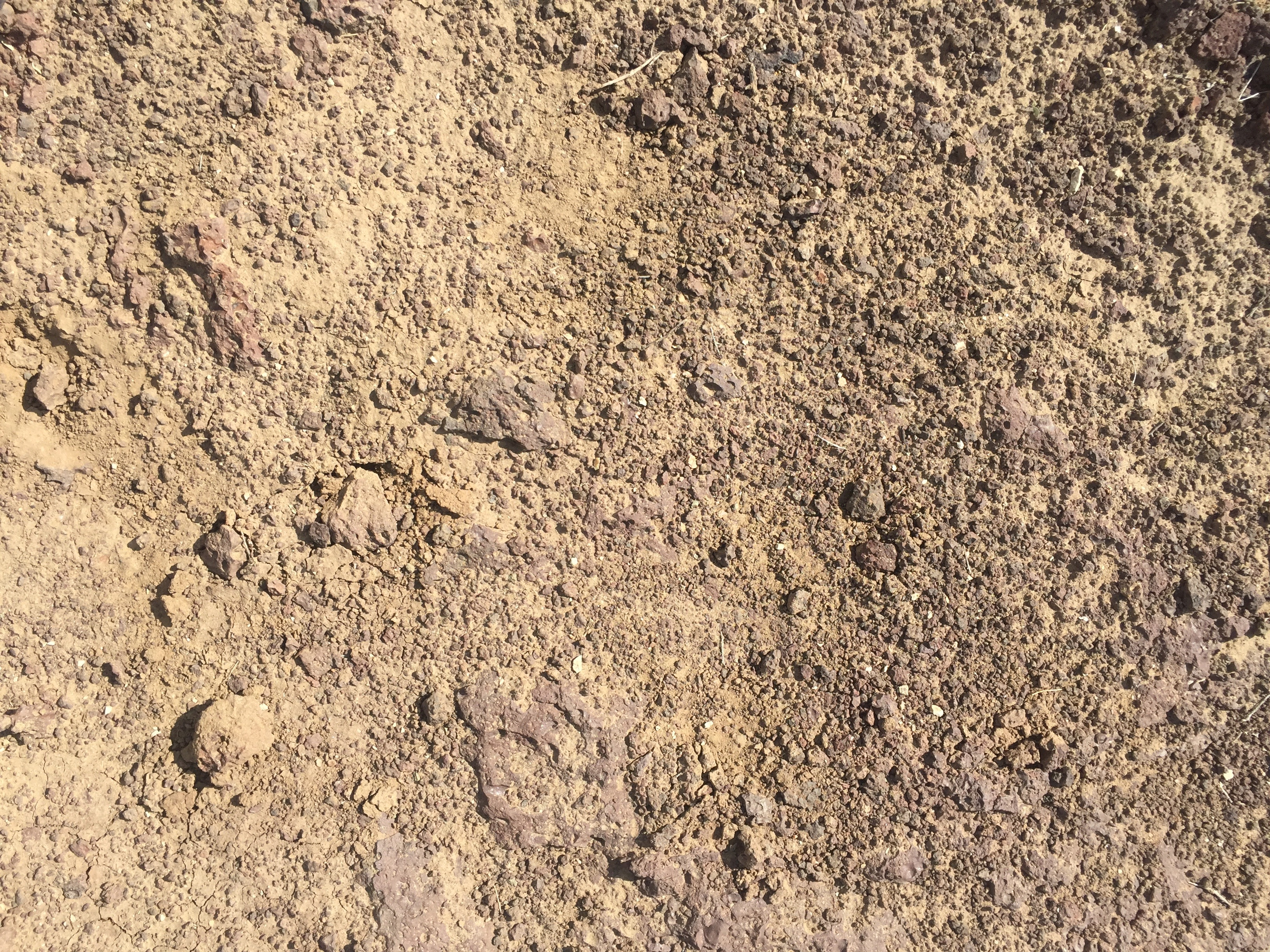 Light brown dried up earth with bits of red volcanic rock