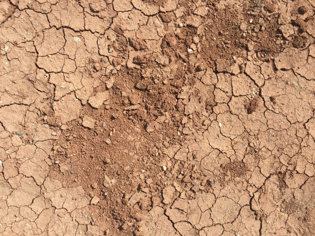 Layer of cracked dry ground with crumbly center