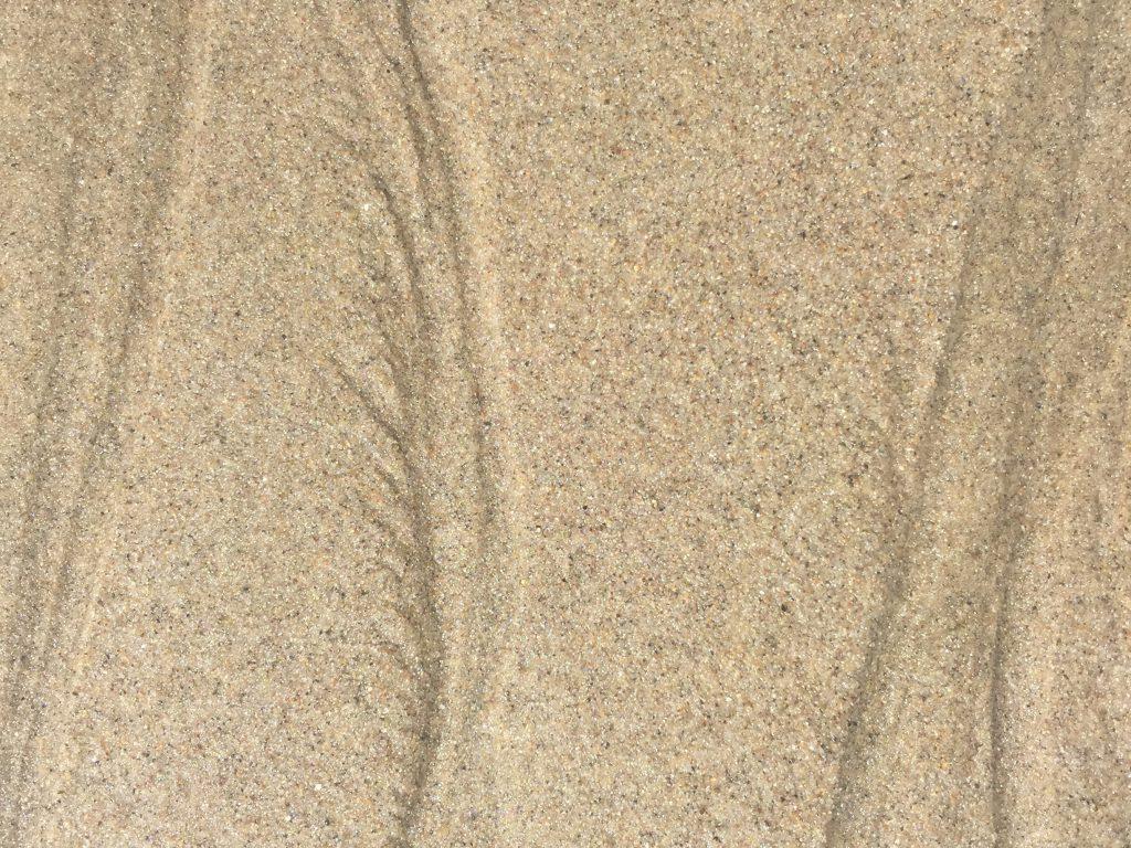 Tan wet sandy beach with ripple marks