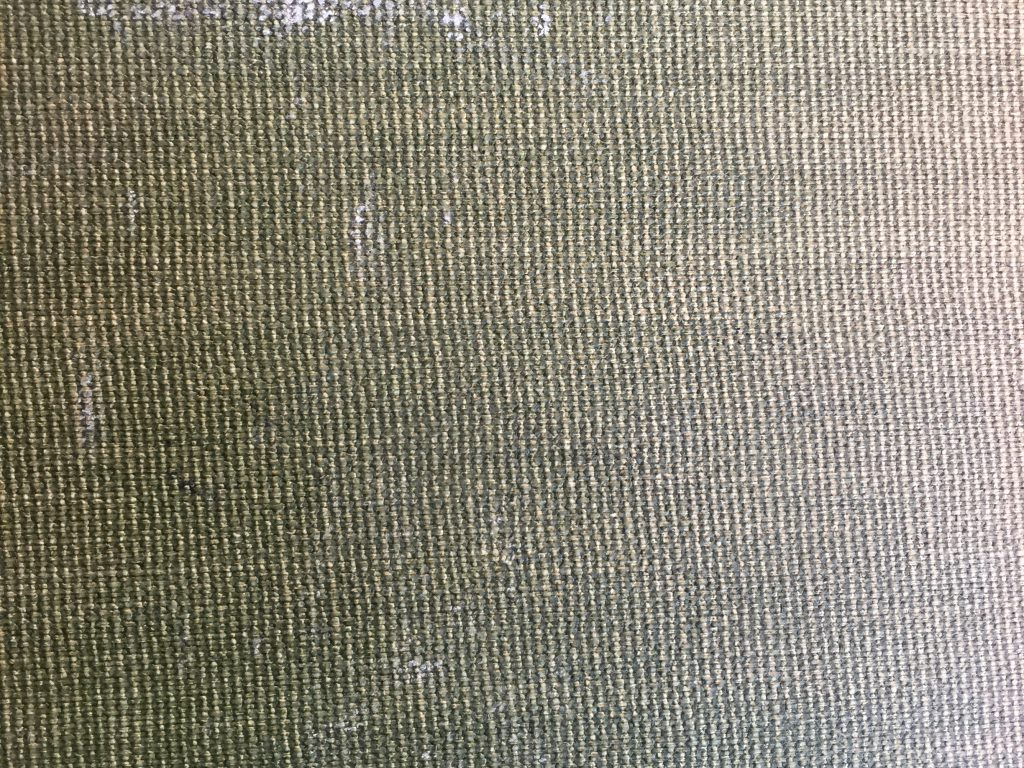 Greenish brown canvas texture