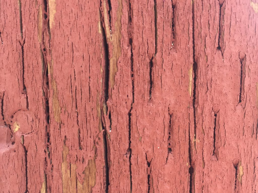 Chipping red paint on splintering dry wood