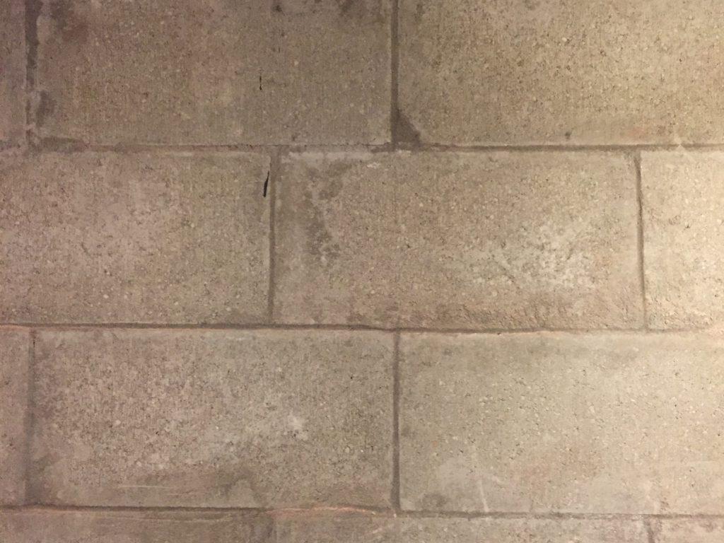 Old cinderblock wall