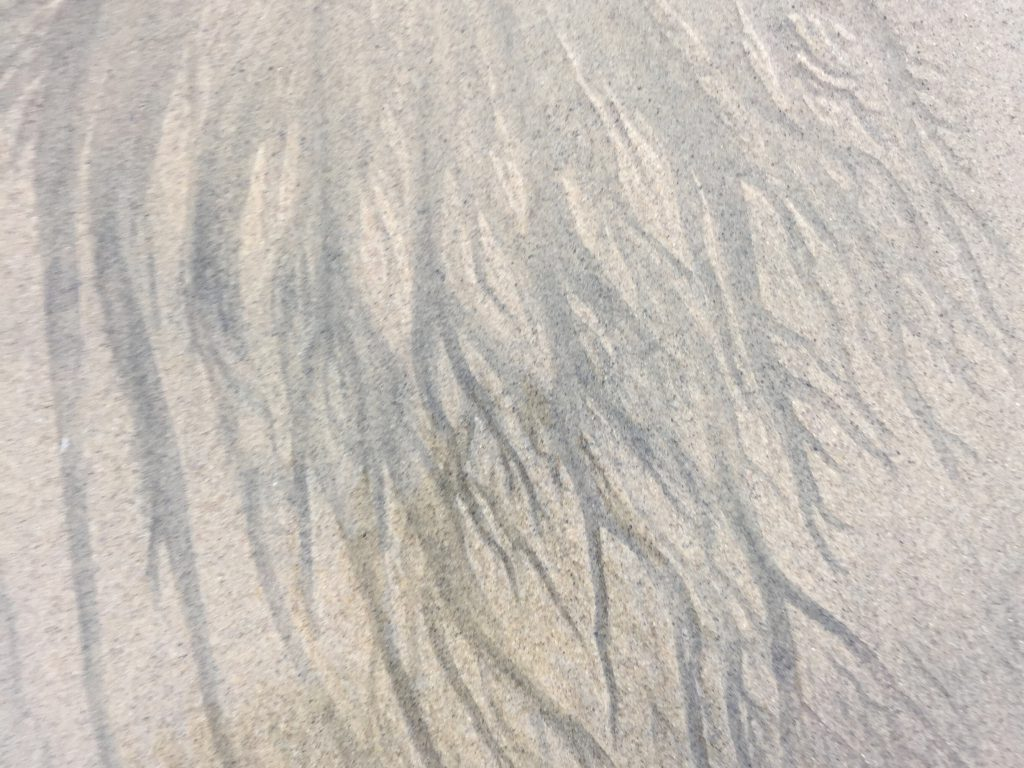 Dark streaks over wet tan sand