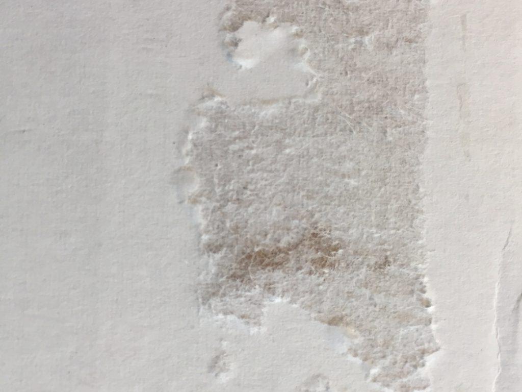 Bright white paper texture