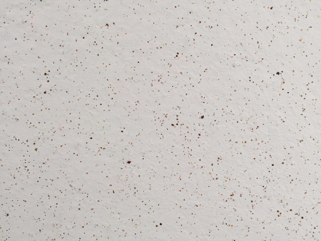 Off white concrete wall
