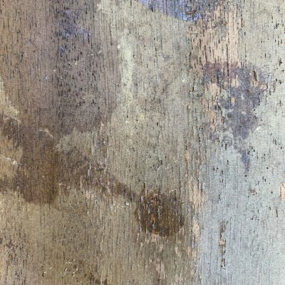 Old and crusty plywood