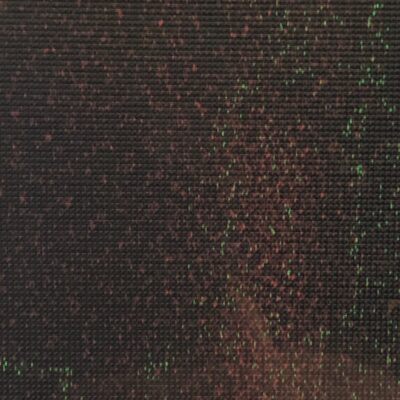 Dull black grid with red and green blurred pixels