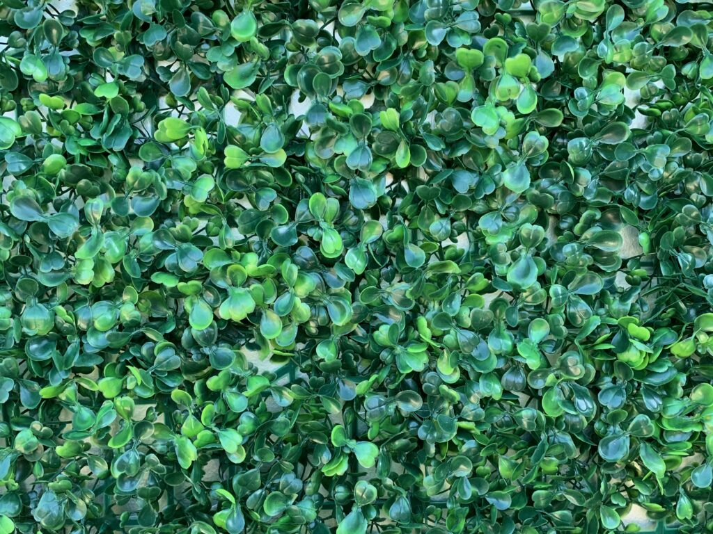Green plastic vines covering white wall