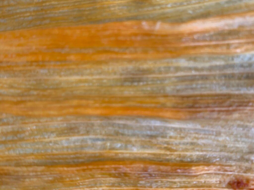 Close up yellow wax like corn husk