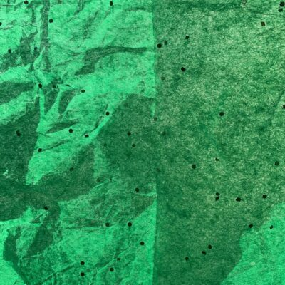 Back lighted thin green paper with black spots
