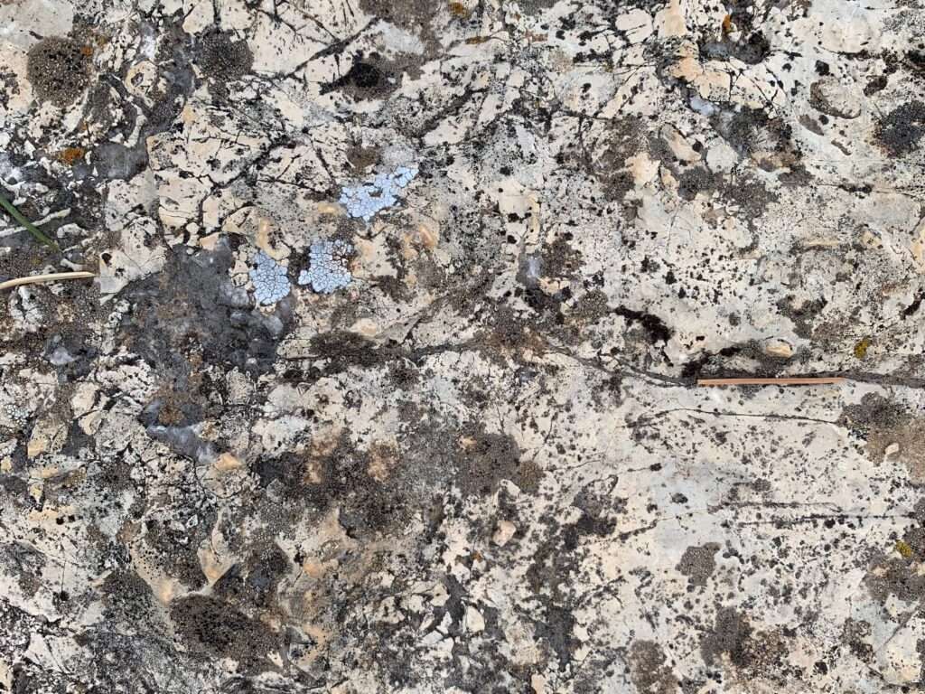 White and gray rock face with lots of cracks and texture