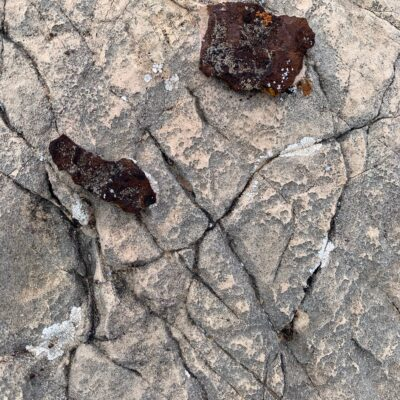 Tan and gray rock with shallow cracks