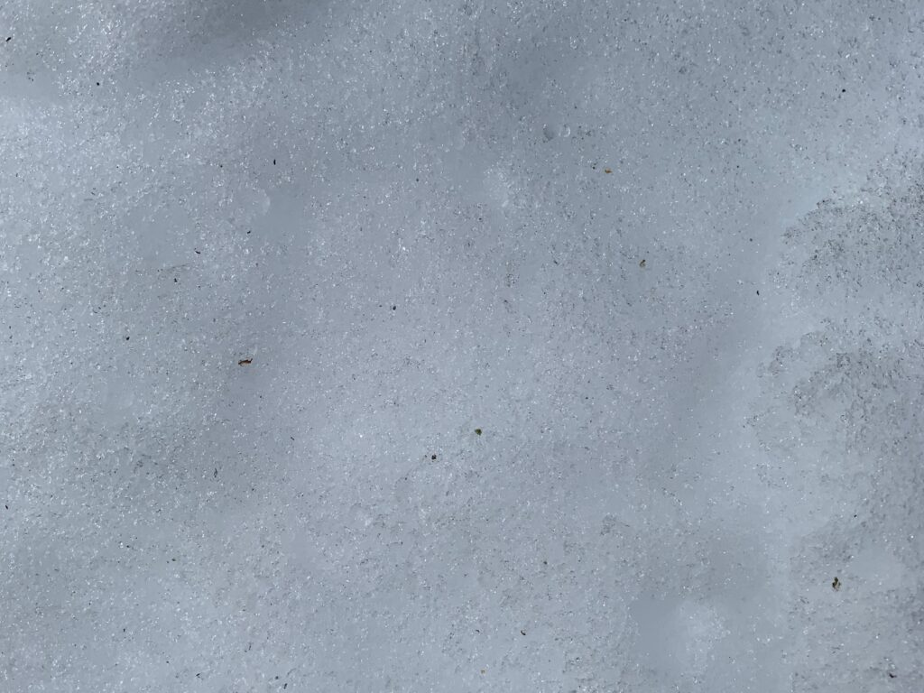 Close up of white snow with icy layer on top
