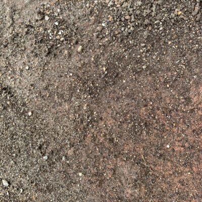 Light brown and gray gravel covered dirt ground